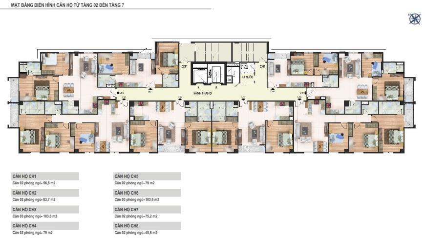 Mặt bằng tầng 02 đến tầng 07 chung cư Yên Hòa Condominium ngõ 259 Yên Hòa