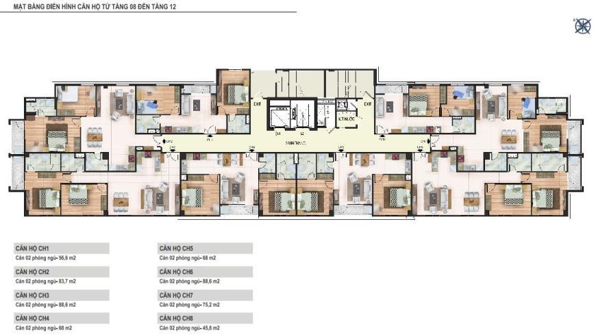 Mặt bằng tầng 08 đến tầng 12 chung cư Yên Hòa Condominium ngõ 259 Yên Hòa